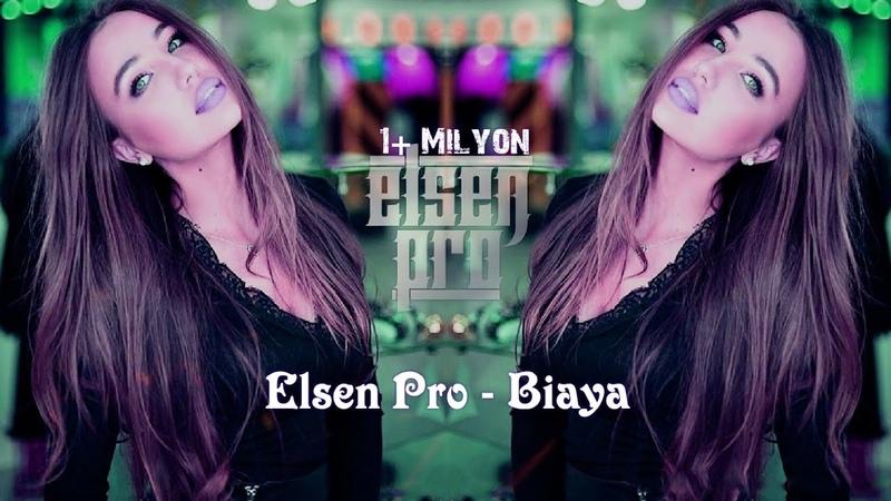 Elsen Pro - Biaya