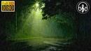 Расслабляющая музыка под шум дождя и раскаты грома для сна