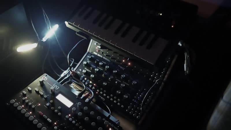 DENEB | Winter | Moog DFAM, Moog Mother-32, Elektron Analog Four, Arturia Microbrute