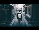 """Whispers Wonder"""" _ Japanese Trance Progressive Mix (Harmonically Mixed)"""