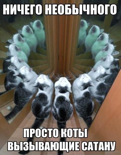 http://cs424219.vk.me/v424219660/55cb/DJf_4G2zsr8.jpg