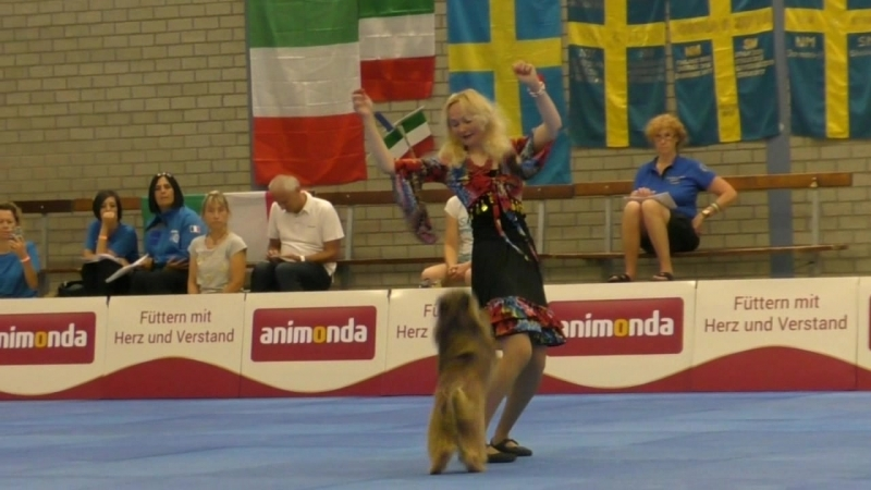 Dogdance World Championship. Freestyle. White dog. Polina Ilina and Berger Pyrenees Hardy