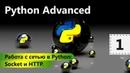 Работа с сетью в Python Socket и Python Advanced Урок 1