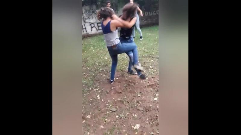 Even catfight