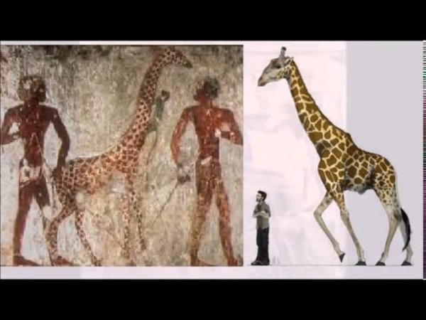 Великаны адиты в Коране кто строил пирамиды баальбек Aad giants in the Koran who built the pyramids