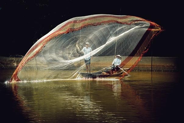 Фотограф Tung Nguyen