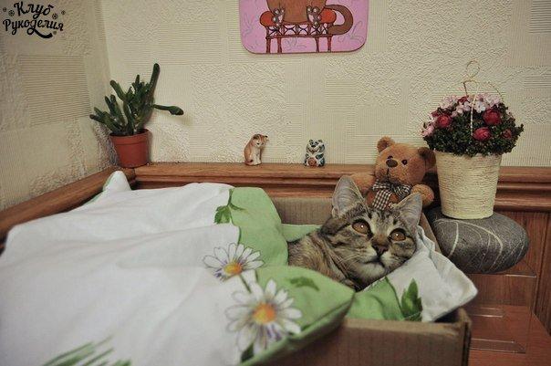 Уютная спальня кошки по имени Елка (6 фото) - картинка