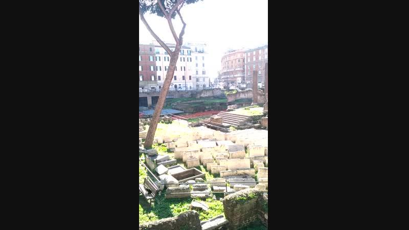 древние развалины Area Sacra