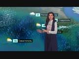 Погода сегодня, завтра, видео прогноз погоды на 1.12.2018 в России и мире