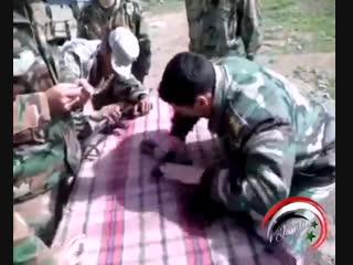 احلا شباب - - الجيش العربي السوري