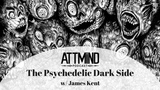 The Psychedelic Dark Side Cults, Psychosis &amp Delusional Ideation w James Kent ~ Ep 58