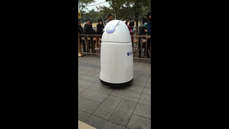 Полицейские роботы в Пекине