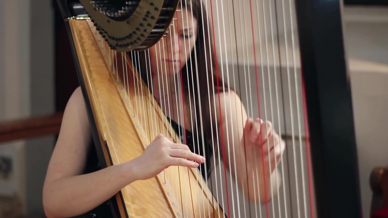 565 J. S. Bach - Toccata and Fugue in D minor, BWV 565 - Amy Turk, Harp