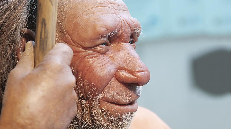 Ученые рассказали об унаследованных от неандертальцев способностях человека.
