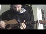 Warpigs (acoustic cover)