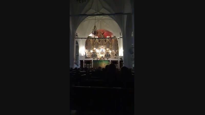 органный концерт в кафедральном соборе