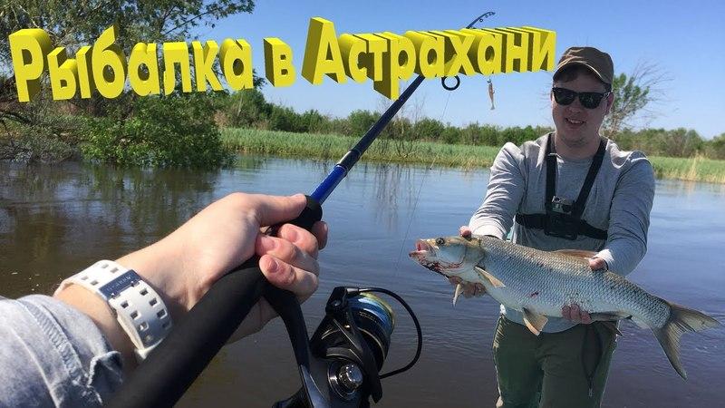 Большая рыбалка в Астрахани. INTRO