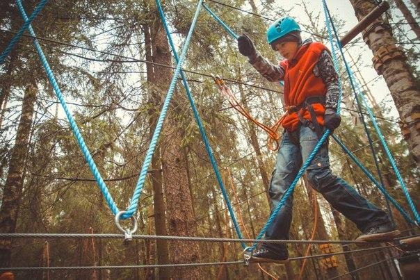 Интересные статьи - Веревочные парки в Спб