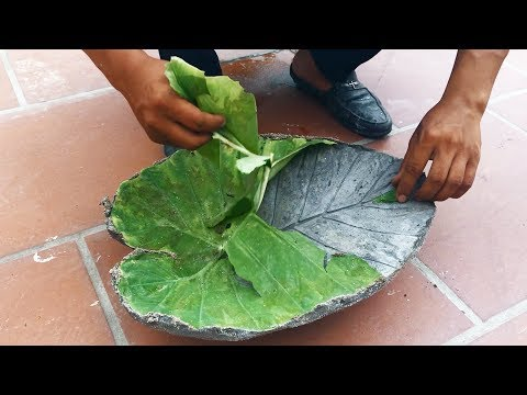 Construction - How to make cement Leaf pot - concrete leaf casting - cement leaves - sand and cement