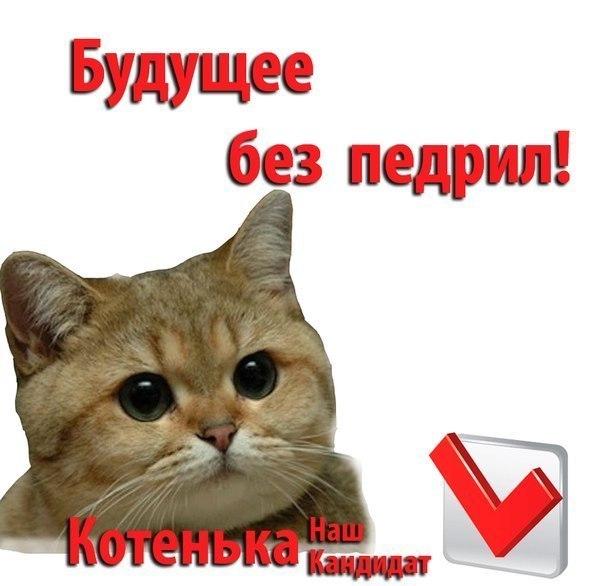 http://cs417227.vk.me/v417227577/b5f/xelOkFEXvCI.jpg