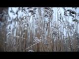 Красивая Грустная Музыка - Когда Душа Грустит...