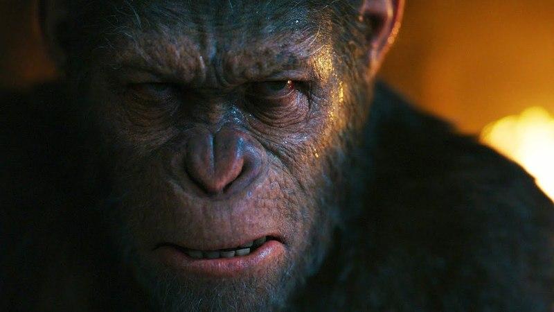 Полковник Маккаллоу (Вуди Харрельсон) убивает семью Цезаря | Планета обезьян: Война