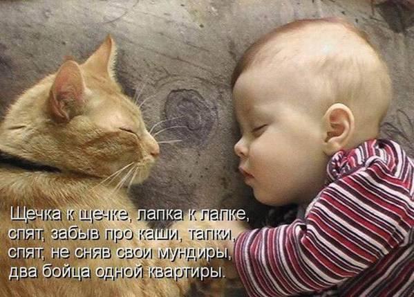 спи глазок, спи другой!