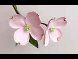 ABC TV How To Make Dogwood Paper Flower With Shape Punch - Craft Tutorial