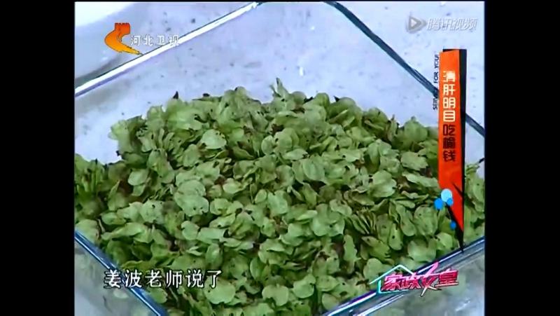 Шеф-повар научит Вас делать сладкую ароматную Лебеду (семена Вяза) ''Да Чу Цзяо Нинь Цзо ЦинСян ТяньМэй ЮйЦянь Фань''. Вяз, или