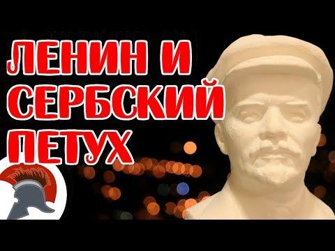 Мало кто знает Ленин ставит на место сербского петуха
