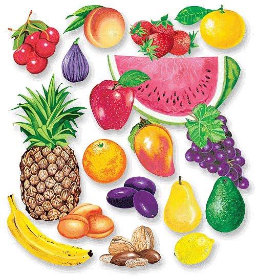 Виноград картинки для детей цветные