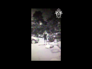 Нападение на пенсионерку в Братеево
