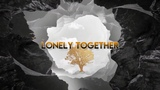 Avicii - Lonely Together (Official Instrumental)
