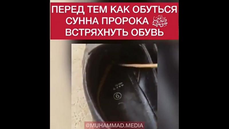 Mahachkala_moskow_derbent_BXgJ9KHAuJX.mp4