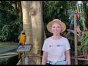 Сафари парк Бали Bali Safari and Marine Park