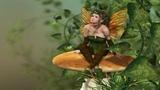 Celtic Music Celtic Elf Music Magical celtic music playlist (1 HOUR)