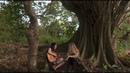 Gaby Moreno ft. Joss Stone - Guatemala