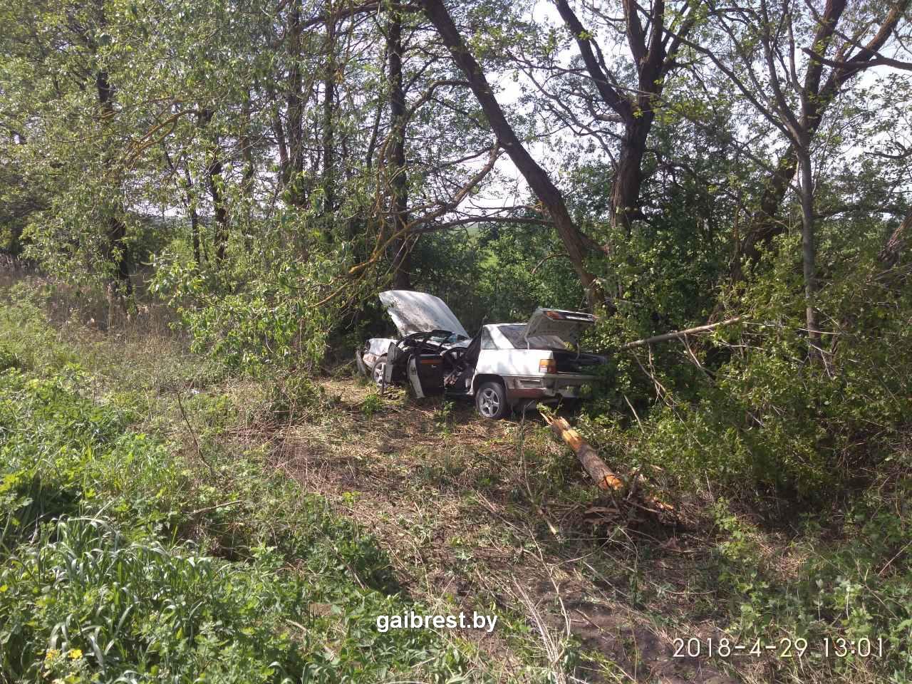 Дрогичинский район: по вине нетрезвого водителя произошло ДТП