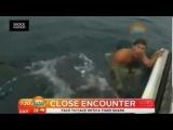 Shaun Harrington Diving With Tiger Shark in Tiny Birdcage | Close Encounter On VIDEO