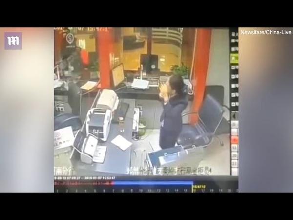 Упавший с потолка кот вызвал переполох в китайском банке