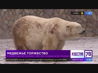 Праздник белых медведей