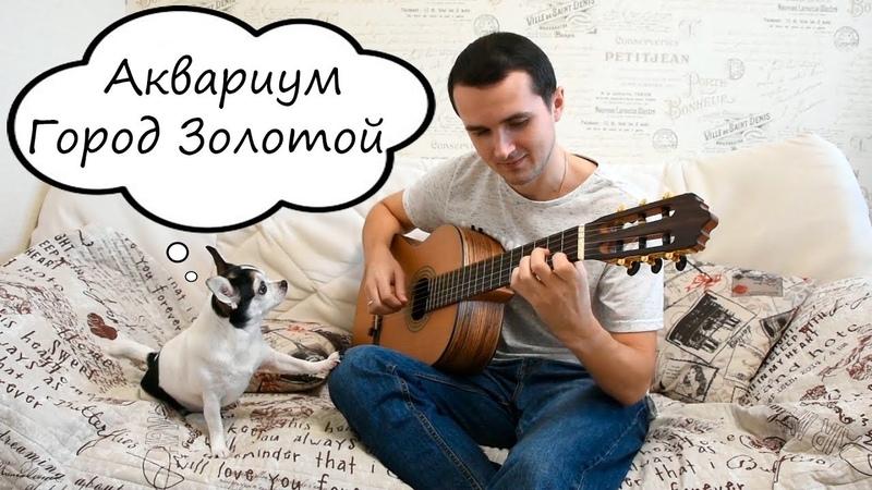 Аквариум - Город Золотой guitar cover