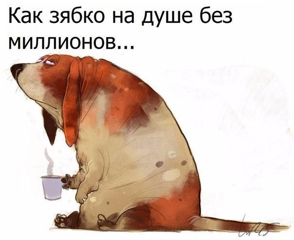 https://pp.userapi.com/c635101/v635101032/1410f/Vs2qErdjS1w.jpg