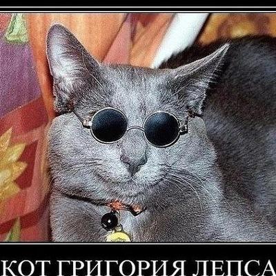 Алексей Фёдоров, 3 февраля , Санкт-Петербург, id213898795