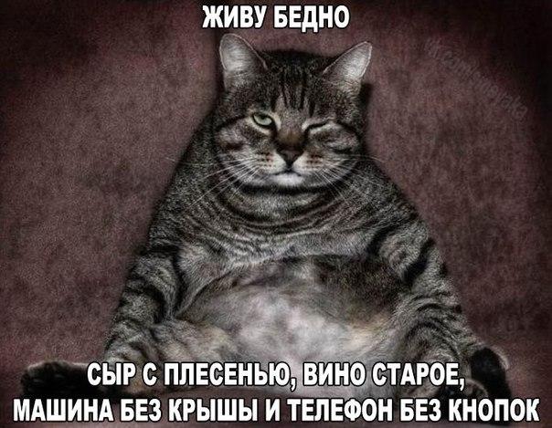 """Дарницкий райвоенком Чекаленко сорвал занятия трех учебных взводов теробороны, - глава """"Украинского Легиона"""" Стеценко - Цензор.НЕТ 7241"""