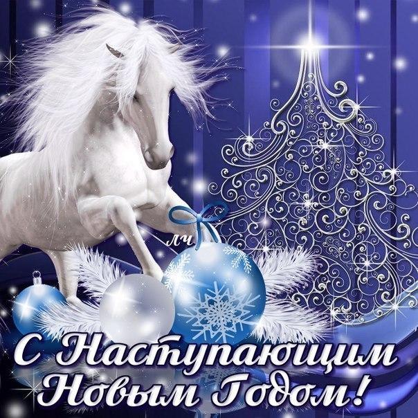 Фото №317204511 со страницы Николая Домогалова