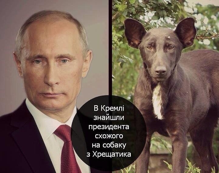 Банкиры признают, что в банковской системе Украины отток депозитов - из-за политических событий - Цензор.НЕТ 9679