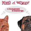 Клуб заботливых хозяев. Собаки и кошки.