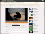 Как добавить видео на Youtube и в блог