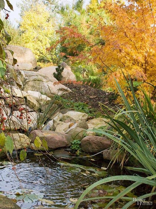 Осенний сад на даче